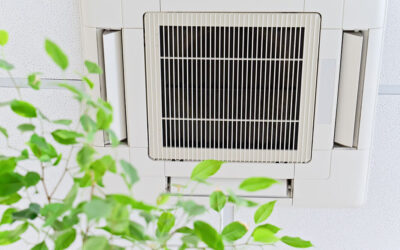 3 Ways to Improve Your Apartment's Air Quality