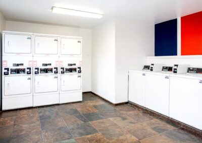Laundry room with colorblocked walls